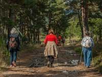 Dalslands vandringsleder
